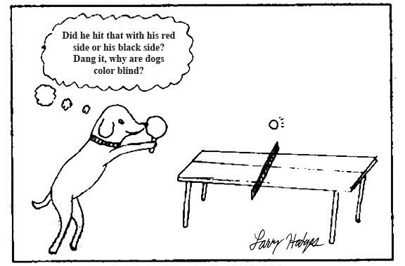 dog-ping-pong-cartoon